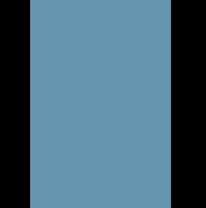 Milestones Icon